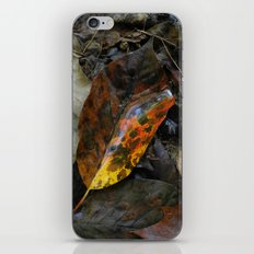 There's a fire in the forest iPhone & iPod Skin