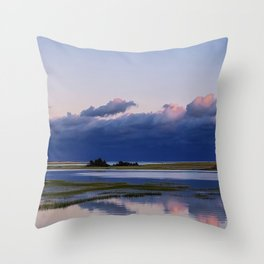 Before the Storm Comes Throw Pillow
