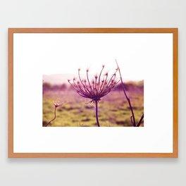 Lightflower Framed Art Print