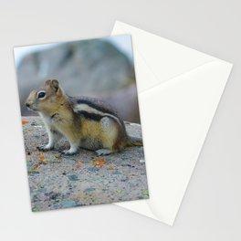 Golden mantled ground squirrel in Jasper National Park   Canada Stationery Cards