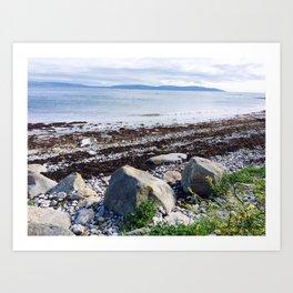 Life at the seashore Art Print