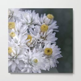 Macro photo white flower Metal Print