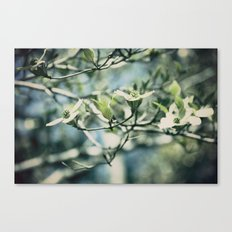Full of Promise Canvas Print