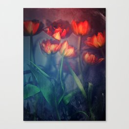 Orange Tulips Canvas Print