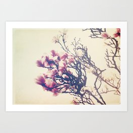 The Crowing Glory of Spring Art Print