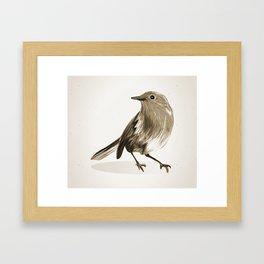 Bird Art Beautiful Pretty Robin In Brown Watercolour Style Birds Framed Art Print
