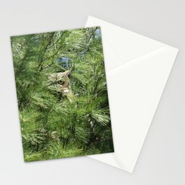 Can you find the owl Stationery Cards