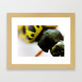 Little Bug Framed Art Print