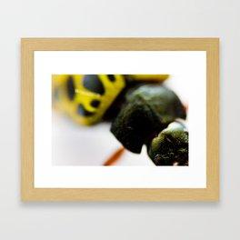 Little Bug Framed Art Print
