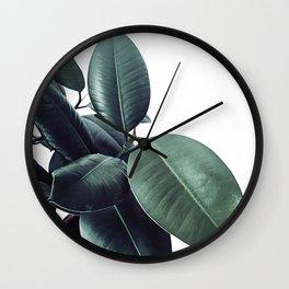 Ficus Elastica #18 #White #foliage #decor #art #society6 Wall Clock