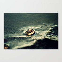 Salt Egg Canvas Print
