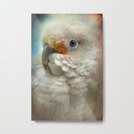 Finer Feathered Friends: Goffin Cockatoo Metal Print
