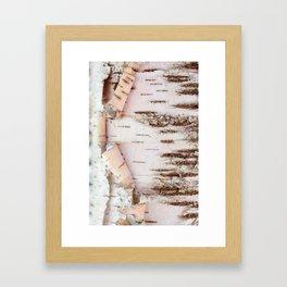 Birch Wood Framed Art Print