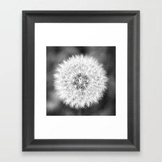 Black & White Dandelion Framed Art Print