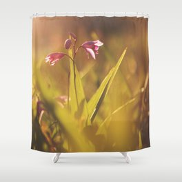 Morning Flowers (2) Shower Curtain