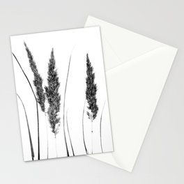 Calamagrostis Stricta Stationery Cards