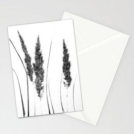 Calamagrostis Stricta Stationery Cards