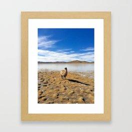 No Drama Llama Framed Art Print