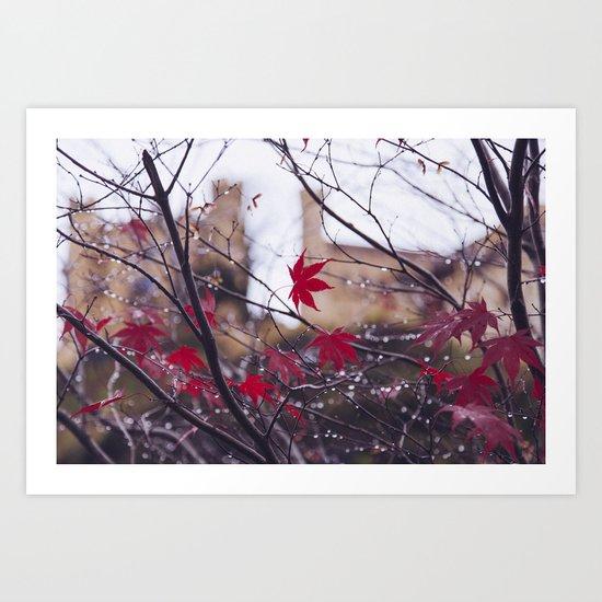 Blood Red Autumn Art Print
