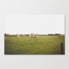 german border Canvas Print