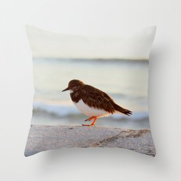 Sandpiper bird enjoying some relaxing time by the sea Throw Pillow