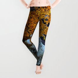 Tree Bark Pattern # 6 with Orange and Blue Lichen Leggings