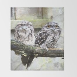 Two Tawny Frogmouths Throw Blanket