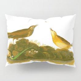 Brown Lark John James Audubon Vintage Scientific Birds Of America Illustration Pillow Sham