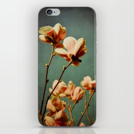 when there was spring iPhone Skin