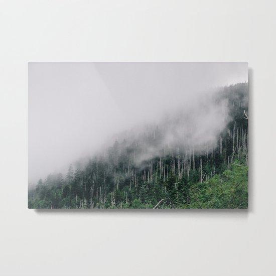 Misty Great Smoky National Park  Metal Print
