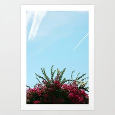 colour Art Print