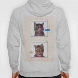 CAT LOVE Hoody