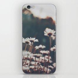Field of Daisies iPhone Skin