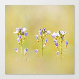 Three lilac flowers Canvas Print