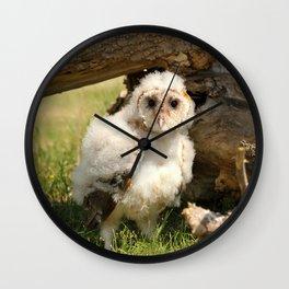 Cotton Owl Wall Clock