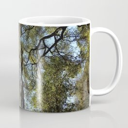 Dos Picos Ramona Oak Tree Coffee Mug