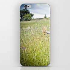 powell butte iPhone & iPod Skin