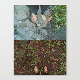 Destressed Canvas Print