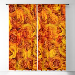 Grenadier Tangerine Roses Blackout Curtain
