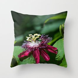 A Surprise Visitor Throw Pillow