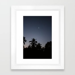 Palm night Framed Art Print