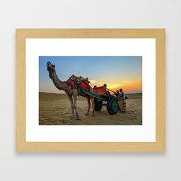 Sunset and Camels in Thar Desert, Sam, Jaisalmer, Rajasthan, India Framed Art Print