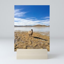 No Drama Llama Mini Art Print