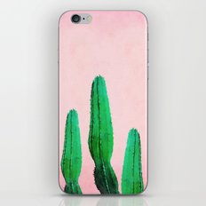 Spring Cactus II iPhone & iPod Skin