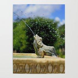 Secret Garden Splashes Poster
