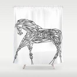 Geometrically Sound Shower Curtain