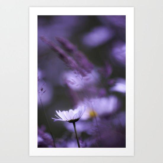 Light of the Petal White. Art Print