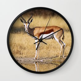 The double Springbok, Africa wildlife Wall Clock