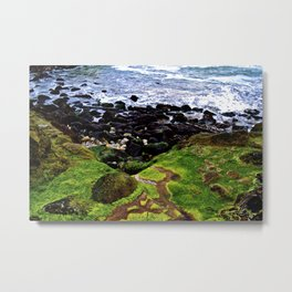 Moss into Ocean Metal Print