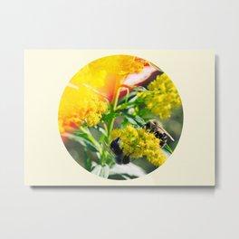 Bee's Knees Metal Print
